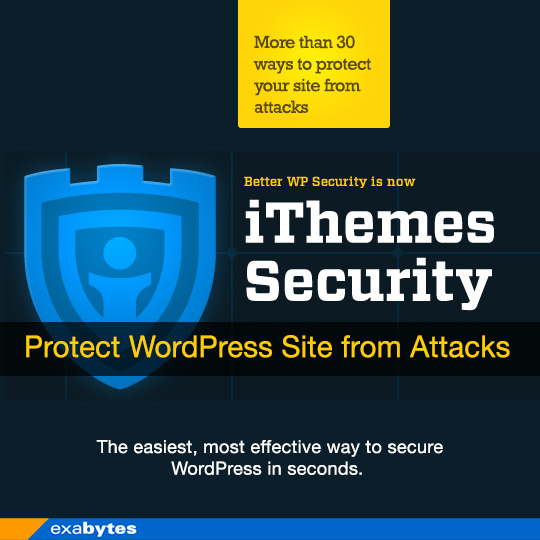 Protect Your WordPress site from Attacks